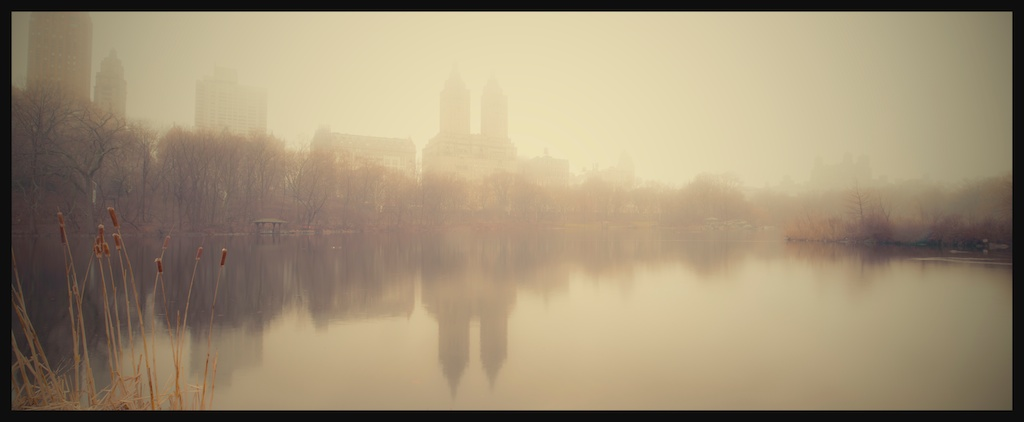 Central Park - Foggy Winter Morning